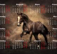 kalender paarden